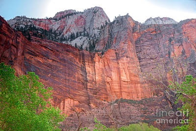 Photograph - Sandstone Wall In Zion by Robert Bales