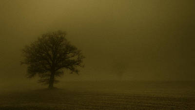 Textured Landscape Photograph - Sandstorm by Chris Fletcher