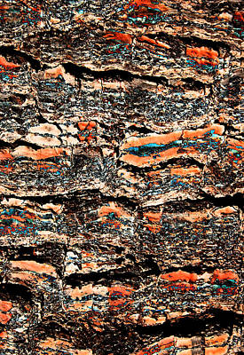Digital Art - Sandwich Bark by Stephanie Grant