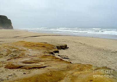 Art Print featuring the photograph Sandy Beach by Carla Carson