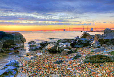 Chesapeake Bay Photograph - Sandy by JC Findley