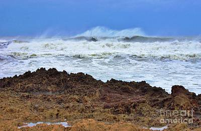 Photograph - Sandy On The Rocks 4 by Don Youngclaus