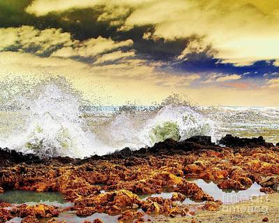 Photograph - Sandy On The Rocks by Don Youngclaus