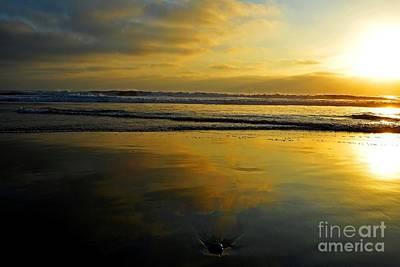 Sandy Reflections Art Print