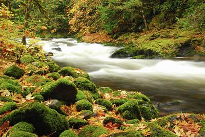 Sandy River In Autumn, Welches, Oregon Art Print by Michel Hersen