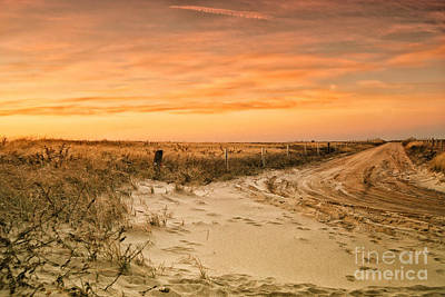 Sandy Road Leading To The Beach Art Print
