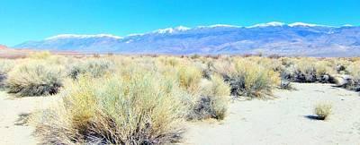 Photograph - Sandy Terrain Panorama by Marilyn Diaz
