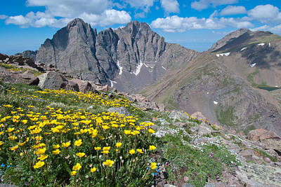 Photograph - Sangre De Cristos Crestone Peak And Wildflowers by Cascade Colors