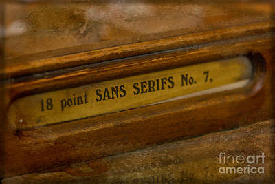 Photograph - Sans Serifs No. 7 by Liz  Alderdice