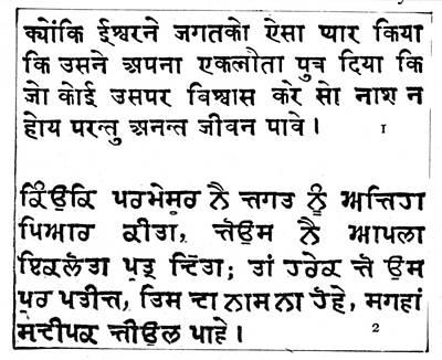 Sanskrit Writing Art Print by Granger