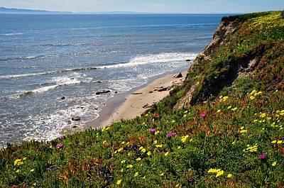 Santa Barbara Beach Beauty Art Print
