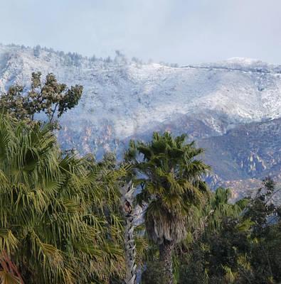Photograph - Santa Barbara Contrast by Marie Morrisroe