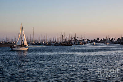 Photograph - Santa Barbara Harbor by Suzanne Luft