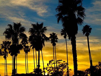 Santa Barbara Sunset Art Print