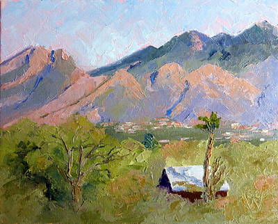 Santa Catalinas Art Print by Susan Woodward