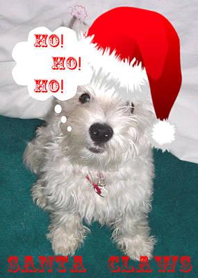 Westie Puppy Digital Art - Santa Claws by Charmaine Zoe