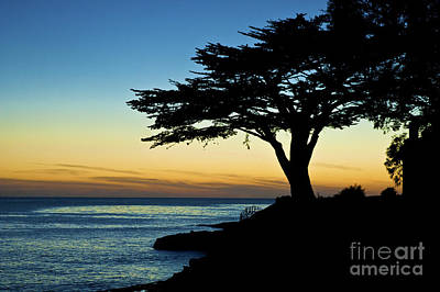 Santa Cruz California 3 Art Print by Micah May