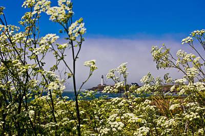 Photograph - Santa Cruz Lighthouse And Flowers by John McGraw