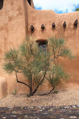 Photograph - Santa Fe - Adobe Building And Tree by Frank Romeo