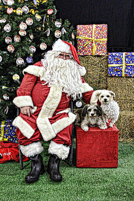 Santa Paws  Art Print by Helen Akerstrom Photography