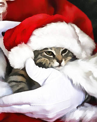 Photograph - Santa Paws by Marty Maynard