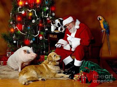 Photograph - Santa Reading Lists With His Parrot-dog And Pig by Doc Braham