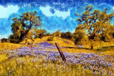 Digital Art - Santa Rosa Field by Kaylee Mason
