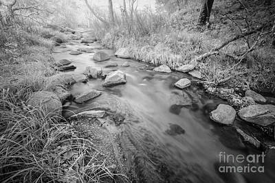 Photograph - Santa Ysabel Creek by Alexander Kunz