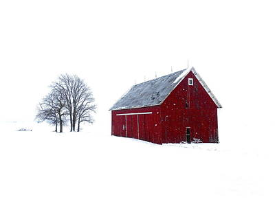 Santa's Barn Art Print by Tim Good