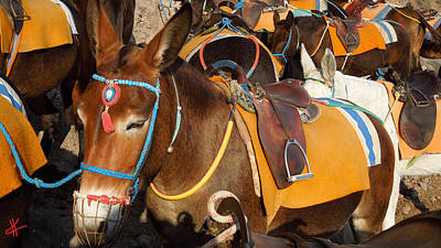 Santorini Donkeys Ready For Work Art Print