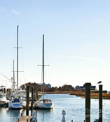 Photograph - Saquatucket River Harwich Port Cape Cod by Michelle Wiarda-Constantine
