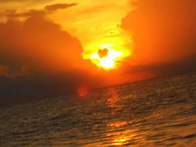 Photograph - Sarasota Sky by Vicki Lynn Sodora