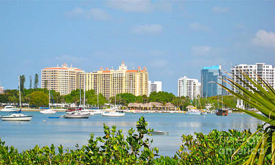 Photograph - Sarasota Skyline by Joan McArthur