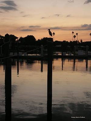 Photograph - Sarasota Sunset by Emmy Marie Vickers