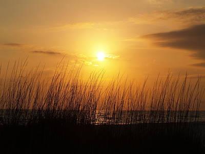 Photograph - Sarasota Sunset's by Athala Carole Bruckner
