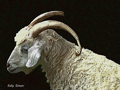 Barnyard Digital Art - Sarge The Goat by Sally Simon