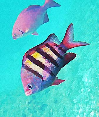 Fish On A Reef Painting - Sargeant Fish by John Malone