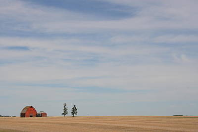 Photograph - Saskatchewan by Betty-Anne McDonald