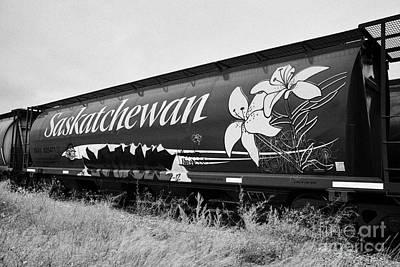 saskatchewan freight grain trucks on canadian pacific railway Saskatchewan Canada Art Print by Joe Fox