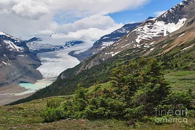 Photograph - Saskatchewan Glacier by Charles Kozierok