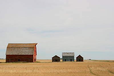 Photograph - Saskatchewan Three by Betty-Anne McDonald