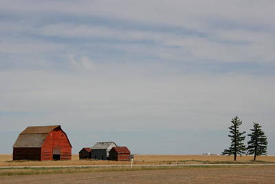 Photograph - Saskatchewan Two by Betty-Anne McDonald