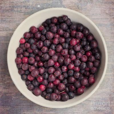 Tasty Photograph - Saskatoon Berries by Priska Wettstein