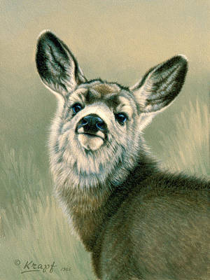 Mule Deer Fawn Painting - Sassy Look by Paul Krapf