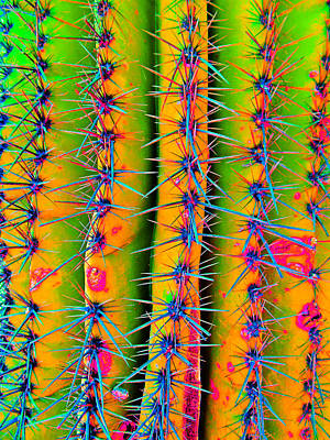 Mixed Media - Sassy Saguaro by Michelle Dallocchio