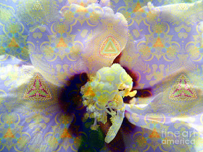 Althea Photograph - Satin Flower Fractal Kaleidoscope by Renee Trenholm