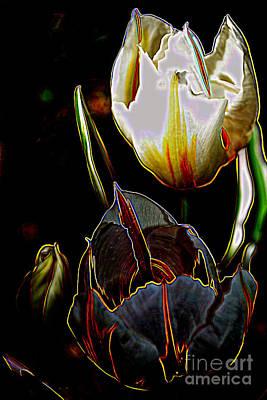 Photograph - Satin Petals by Diane montana Jansson