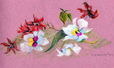 Still Life Drawings - Saturday Orchids by Mindy Newman