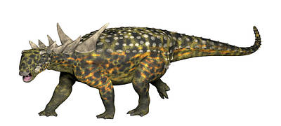 Photograph - Sauropelta, An Early Nodosaurid by Arthur Dorety