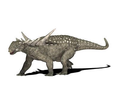 Sauropelta Dinosaur Art Print by Friedrich Saurer